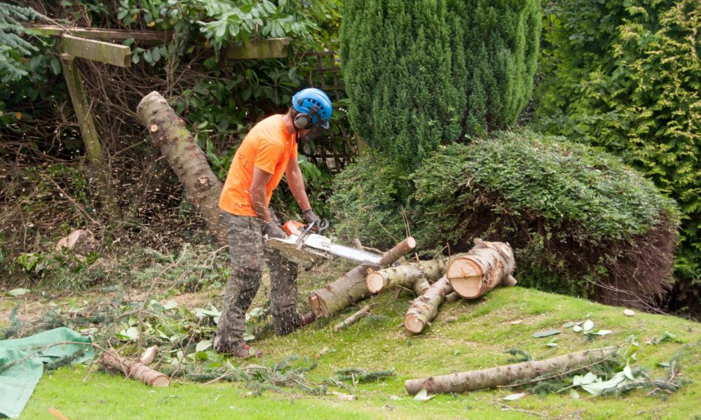 Luxpaving Garden Clearance & Maintenance Featured Page Image